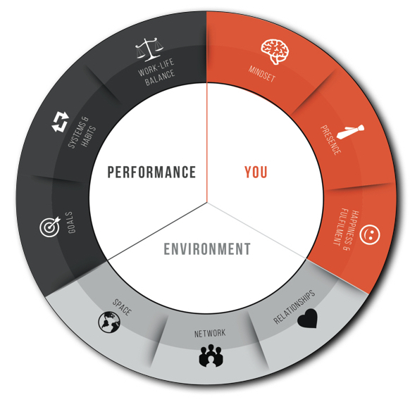 Tomas Svitorka's Three Element Coaching Model