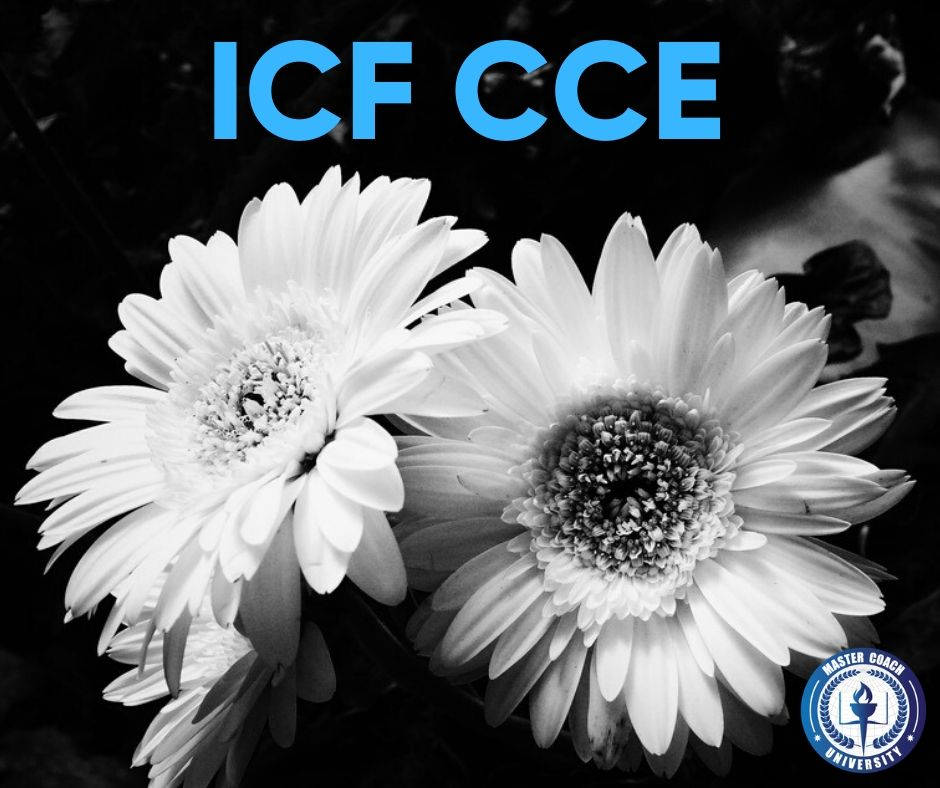 Advance Your Coaching Career with ICF CCE