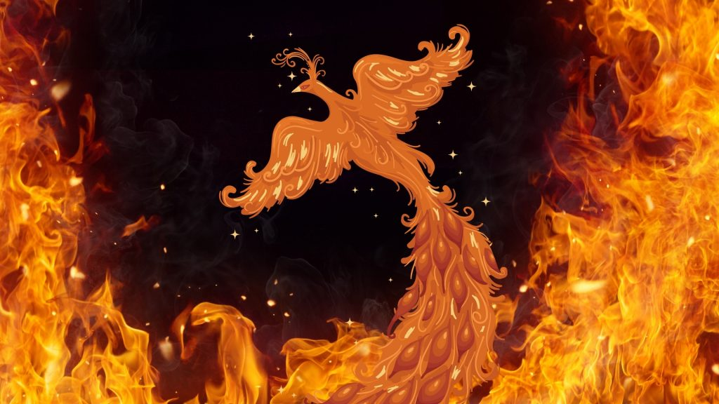 Celebration for clients is like a phoenix rising from the ashes